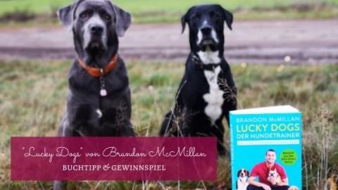 """Buchtipp & Verlosung """"Lucky Dogs – Der 7-Tage-Trainingsplan für jeden Hund"""" von Brandon McMillan"""
