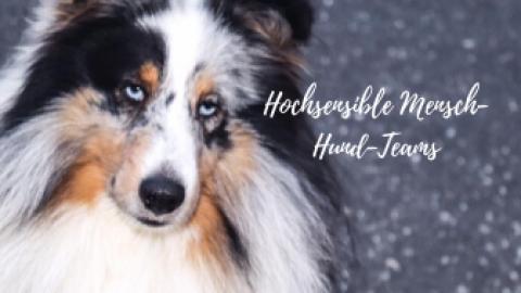E-Book Hochsensible Mensch-Hund-Teams