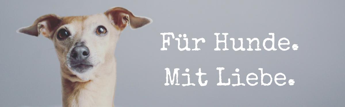 miDoggy Blog Community für Hunde mit Liebe