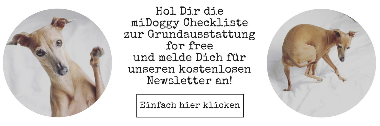 miDoggy Checkliste zur Grundausstattung Hund