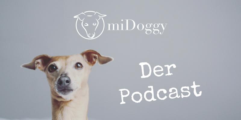 miDoggy Der Podcast für alle Hunde und Hundebesitzer