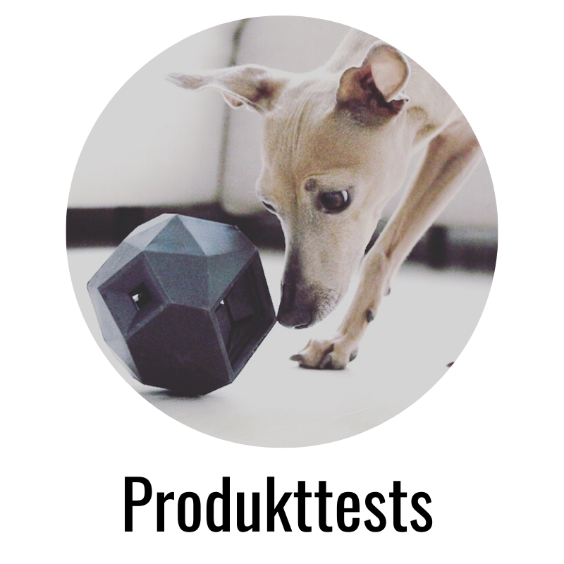 miDoggy Produkttests