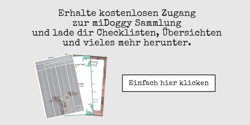 miDoggy Sammlung Hundeblog