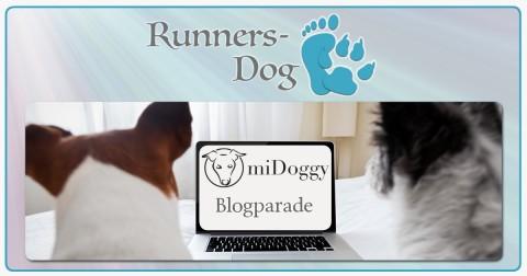"""miDoggy Parade """"Hund im Bett – ja oder nein?"""""""