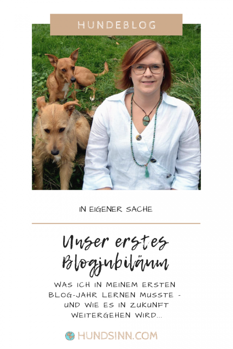 Blogjubiläum! Wir feiern das erste Jahr voller HundSinn