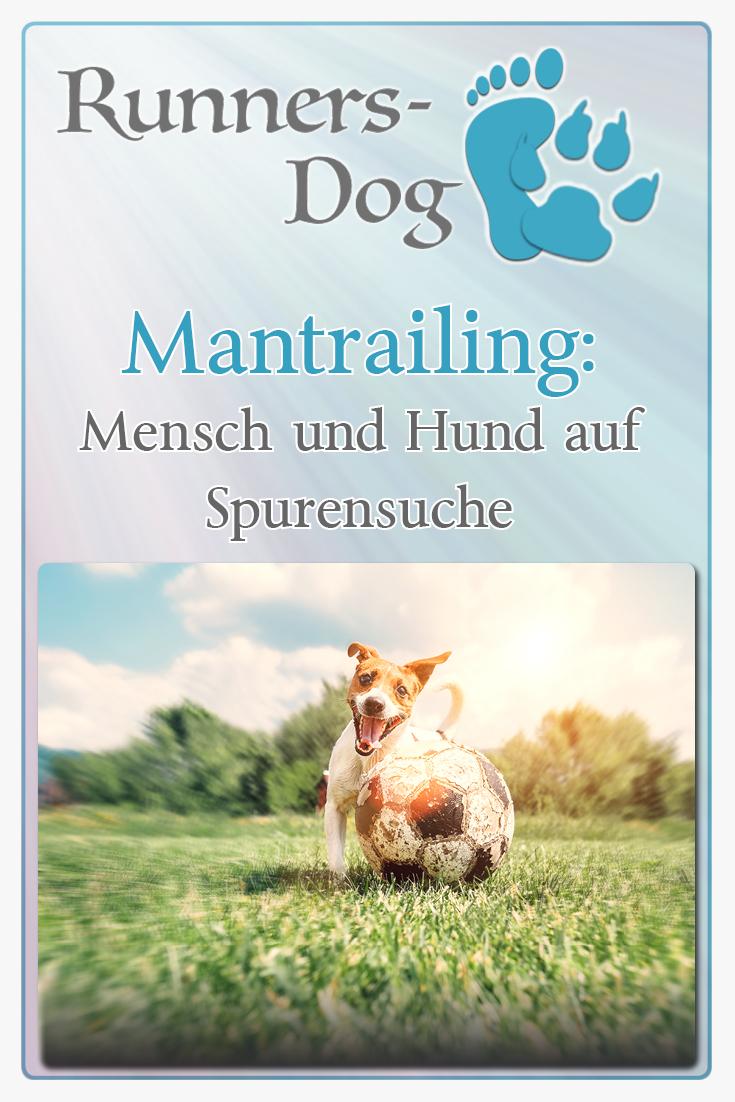 pinterest-hundesport-mantrailing