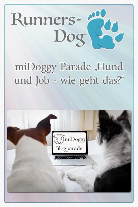 """miDoggy Parade """"Hund und Job – wie geht das?"""""""