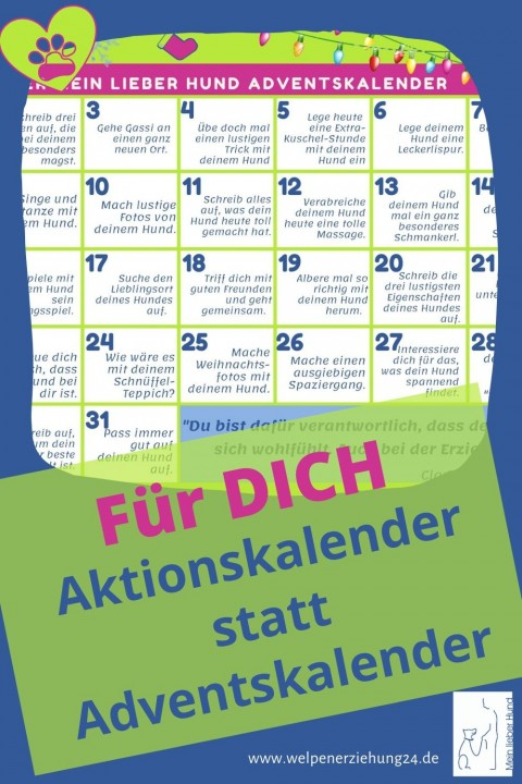 Aktionskalender statt Adventskalender