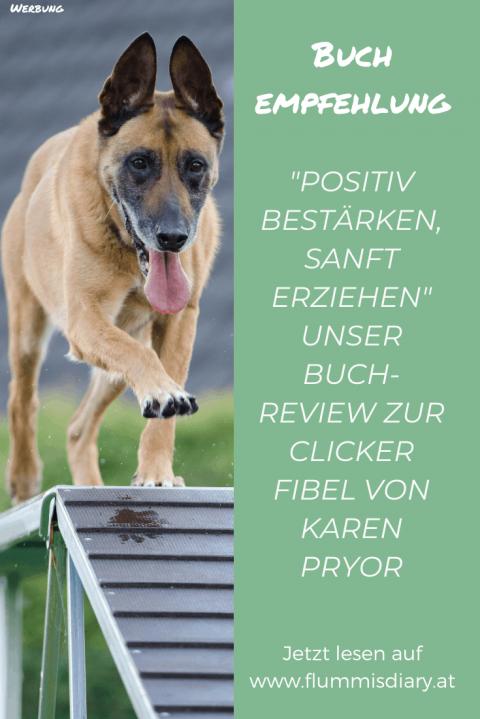 """""""Positiv bestärken, sanft erziehen"""" – Buchreview"""