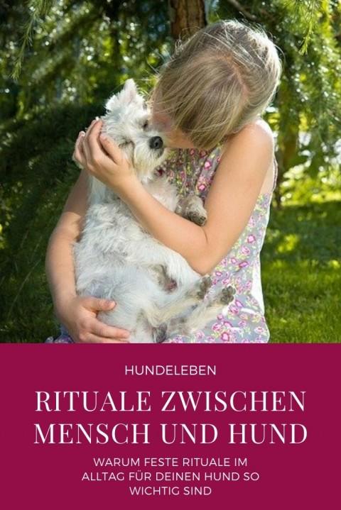 Warum Rituale so wichtig sind für die Mensch-Hund-Bindung