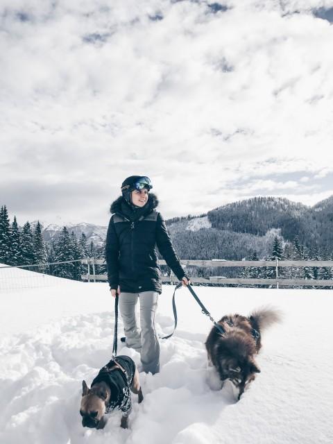 Rodeln mit Hund: Wintersport-Tipps für Zwei- und Vierbeiner!
