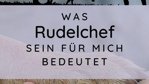 """Was """"Rudelchef"""" sein für mich bedeutet"""
