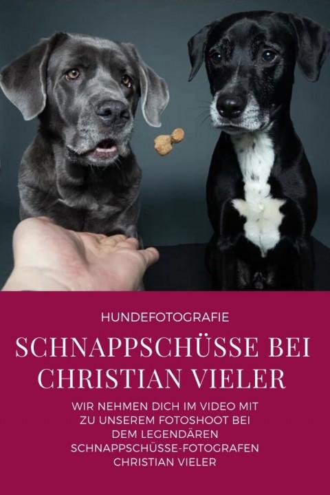 Schnappschüsse bei Christian Vieler