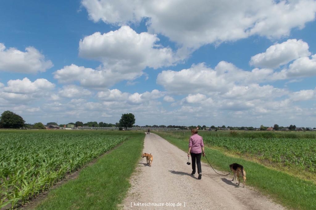 schoonste wanderroute sevenum limburg mit hund
