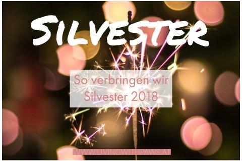 Silvester 2018 – Unser Plan