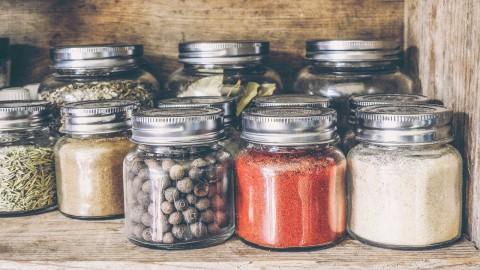 8 natürliche Mittel gegen Zecken: warum und wie sie wirken