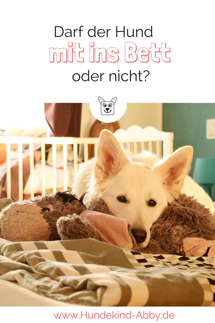 Darf mein Hund mit im Bett schlafen?
