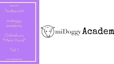 [Testbericht] miDoggy Academy – Teil 1