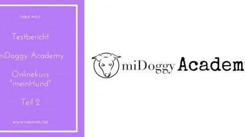 [Testbericht] miDoggy Academy – Teil 2