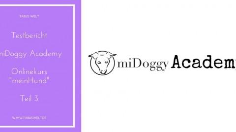 [Testbericht] miDoggy Academy – Teil 3