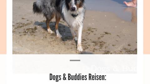 Dogs & Buddies Reisen: Der Hundestrand Heringsdorf Bansin auf Usedom
