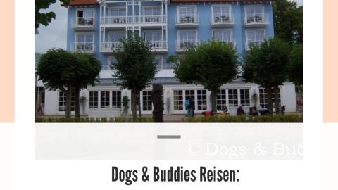 Dogs & Buddies Reisen: Flanieren in Zinnowitz