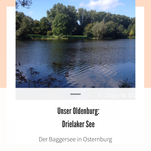 Unser Oldenburg: Drielaker See