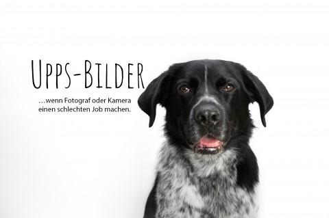 Unsere Upps-Bilder – Wenn Fotograf oder Kamera einen schlechten Job machen