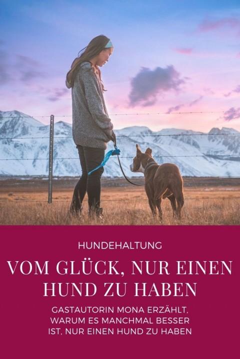 """Vom Glück """"nur"""" einen Hund zu haben"""