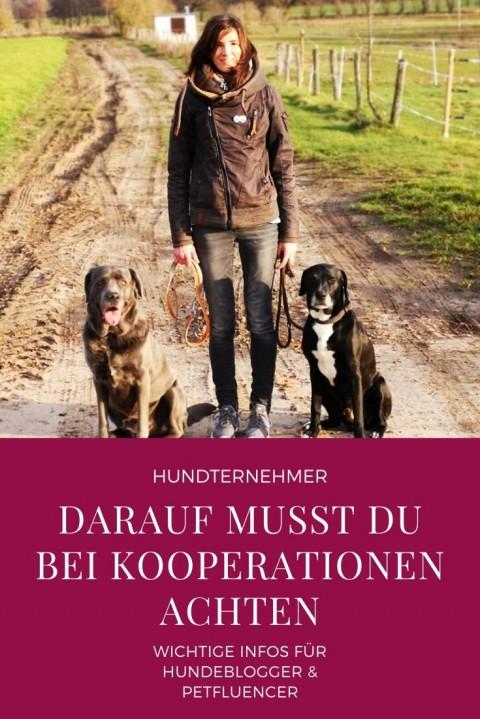 Hundeblogger & Petfluencer – Was du bei Kooperationen beachten solltest