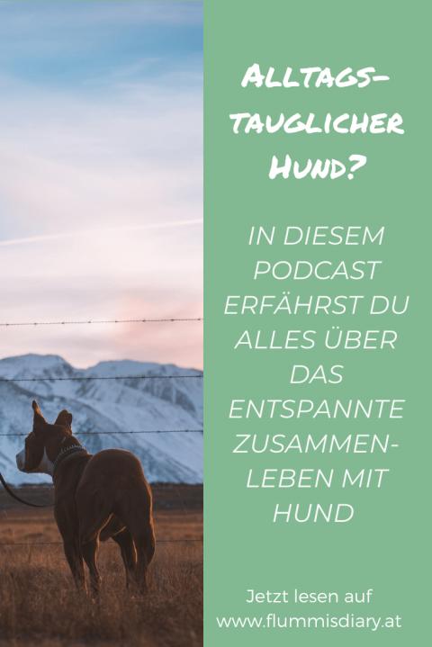 Neuer Hunde-Podcast: WAU – der österreichische Hunde-Podcast
