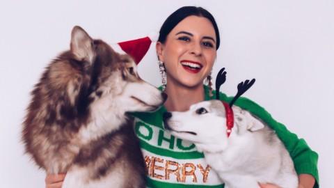 der tierische Geschenkefinder: Tolle Weihnachtsgeschenke für Hunde und Hundebesitzer!