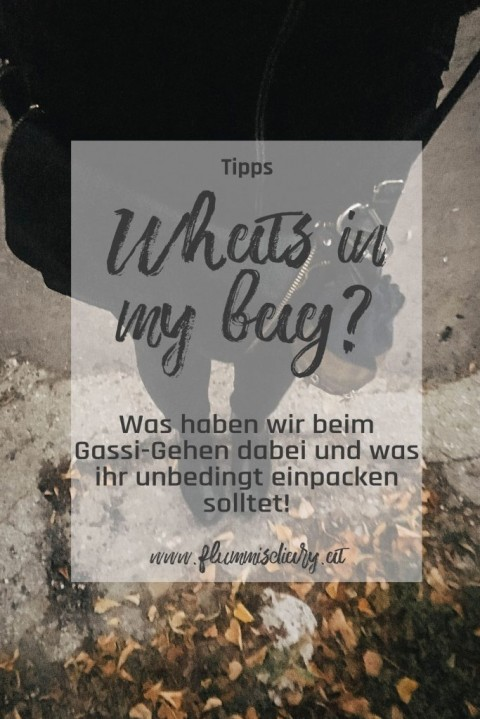 Gassi gehen: What's in my bag?