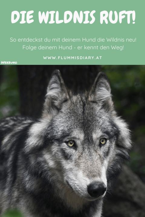 """Buchrezension: """"Wilde Pfade"""" von Raoul Weber"""