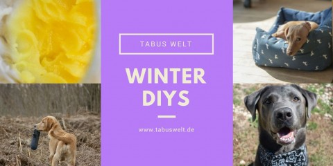 DIYs für den Wintereinbruch