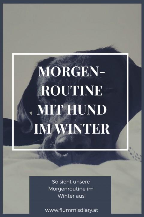 Morgenroutine mit Hund im Winter